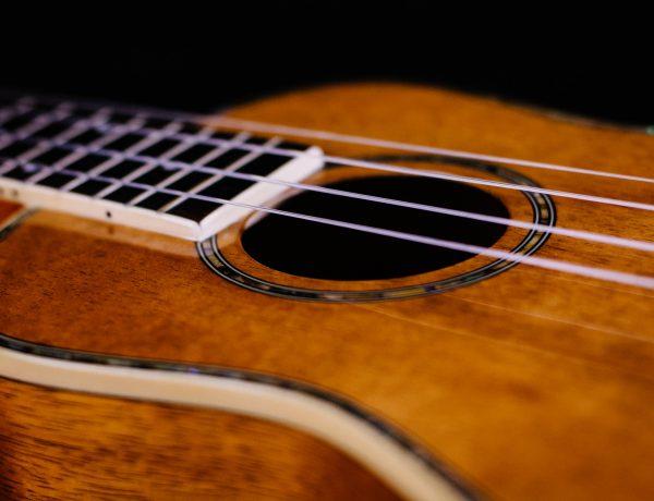 close-up of ukulele
